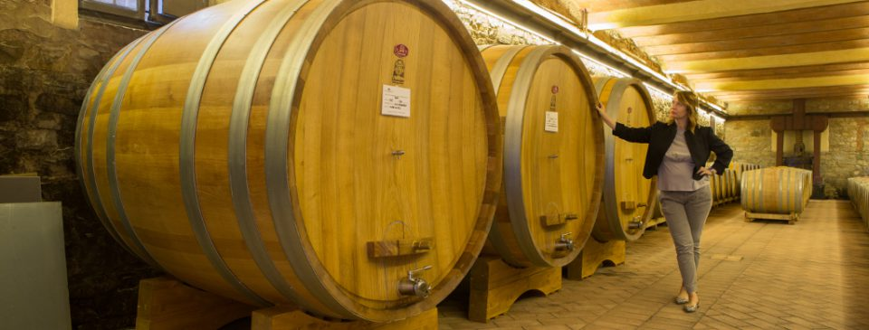 Oak Barrels for the Maturation of wine