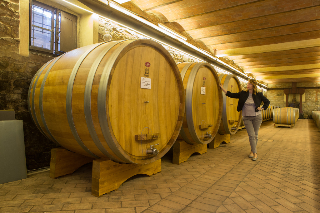 Oak Barrels for the Maturation of wine